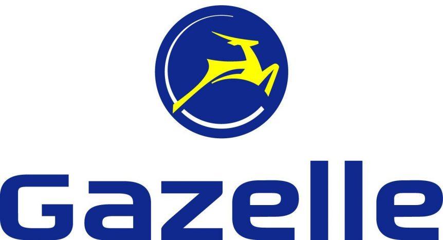 Gazelle eBikes