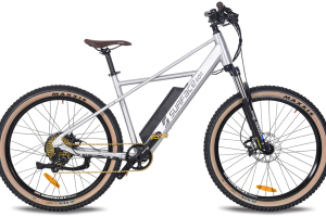 Surface604 Quad electric bicycle