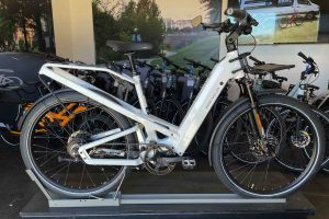 Riese and Muller Homage GT Vario HS